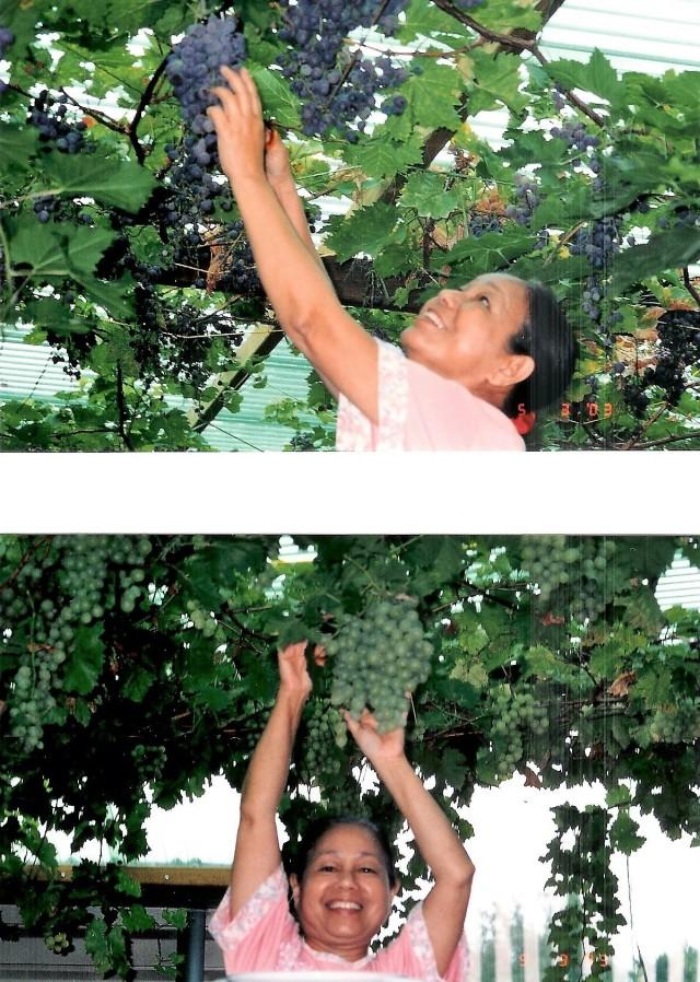 Que & Wally's Garden 006.jpg