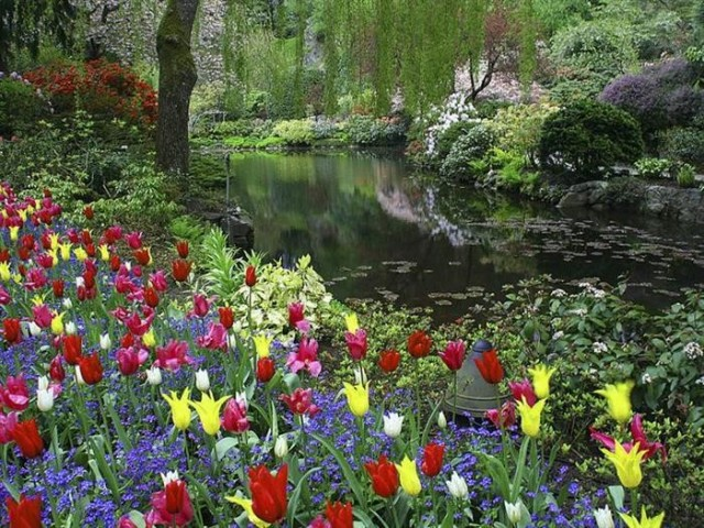 Butcharts Gardens, Victoria, B.C., Canada.jpg